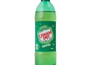 Canada Dry 0,5l